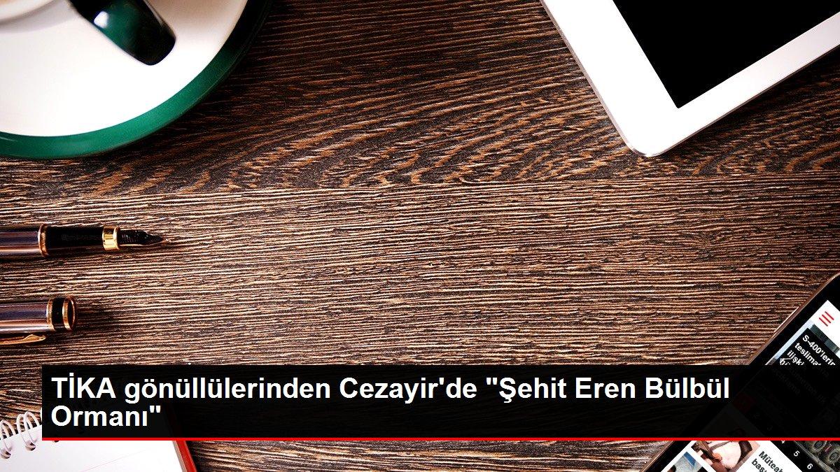"""TİKA gönüllülerinden Cezayir'de """"Şehit Eren Bülbül Ormanı"""""""