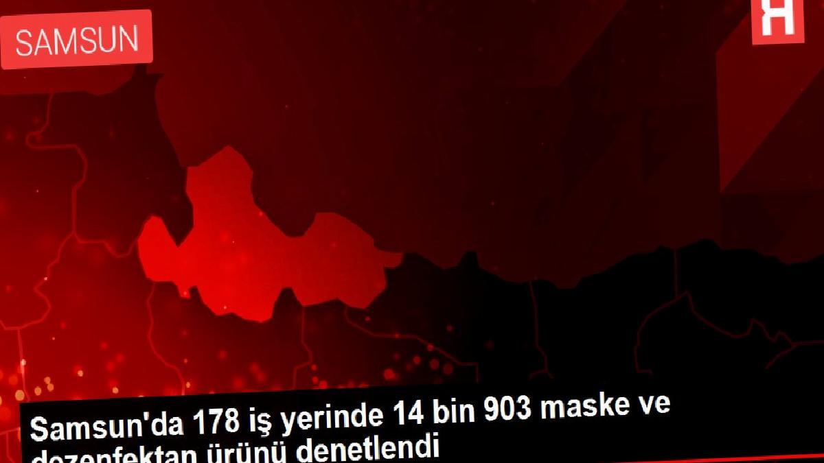 Samsun'da 178 iş yerinde 14 bin 903 maske ve dezenfektan ürünü denetlendi