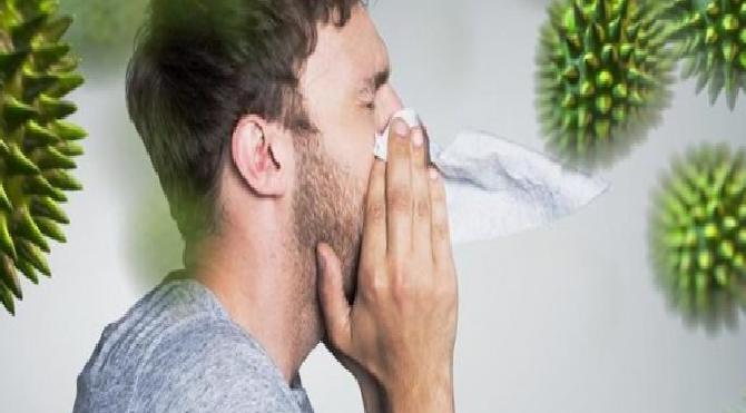 Bağışıklık sistemi nasıl çalışır?