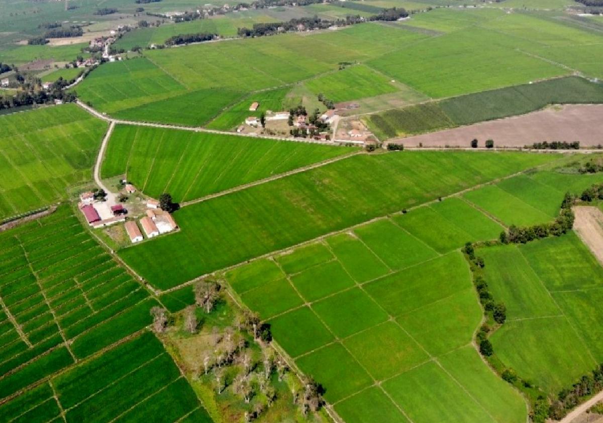 Samsun'da 2020'de 430 bin 170 dekar tarım arazisi daha suya kavuşacak