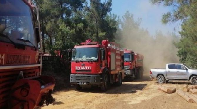 Saros'taki yangın otomobil kazasından sıçramış!