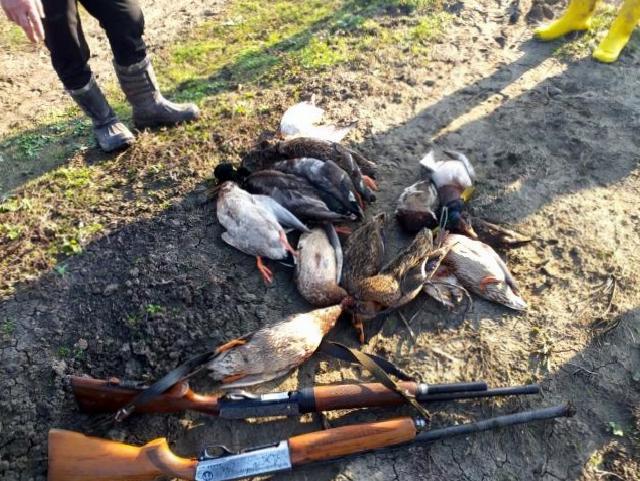 Öğretmenden Kuş Cenneti'nde ördek katliamı