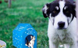 Berko İlaç Hayvan Dostu Bir Projeyi Hayata Geçirdi