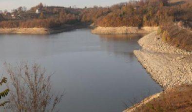 Türkiye'nin önemli sulak alanlarından Kızılırmak Deltası'nda kuraklık tehlikesi