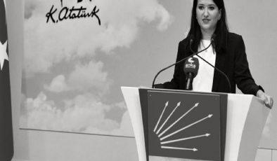 CHP'li Gökçen: Kaybolan yıllarımızın sorumlusu Erdoğan'dır